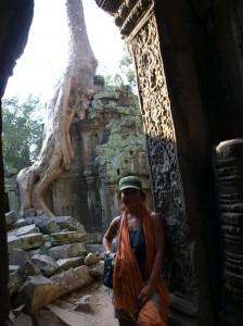 los arboles de seda tomaron posesion del templo y crecieron sobre sus muros